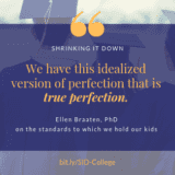 "Quote from Ellen Braaten - ""We have this idealized version of perfection, which is true perfection."""