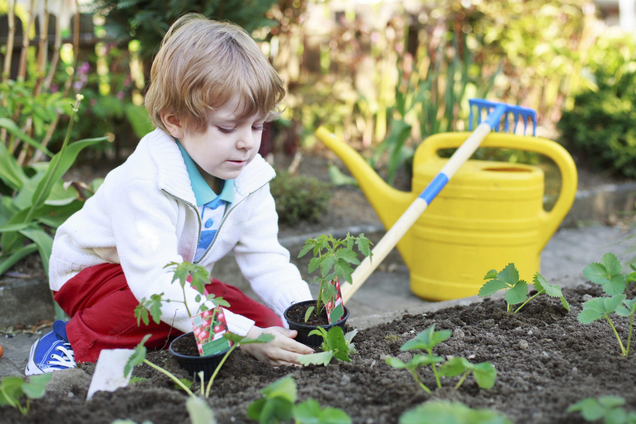 Learning over the summer keeping kids engaged mgh clay center - Practical tips for gardening in june ...